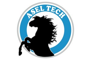 Asel Tech Limited Şirketi