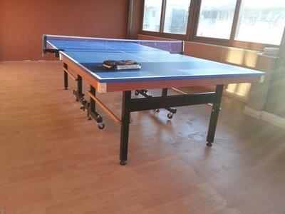 Profesyonel Pinpon Tenis Masası - İç Mekan