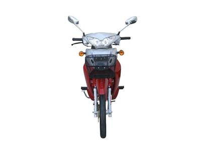 asya_107cc_motosiklet_as_110_8-2.jpg
