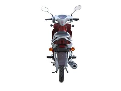 asya_97cc_motosiklet_as_100_8-3.jpg