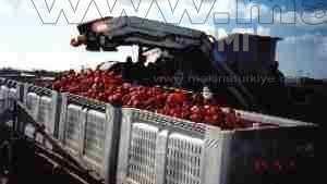 Biber Hasat Makinası / Yuncey B-Hm-001