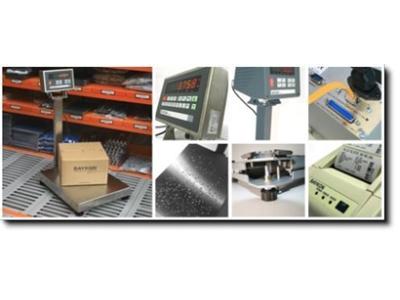 Endüstriyel Baskül / Baykon T Serisi