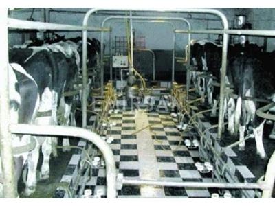 Emirsan E-SS-005 2x8 Süt Sağım Sistemi
