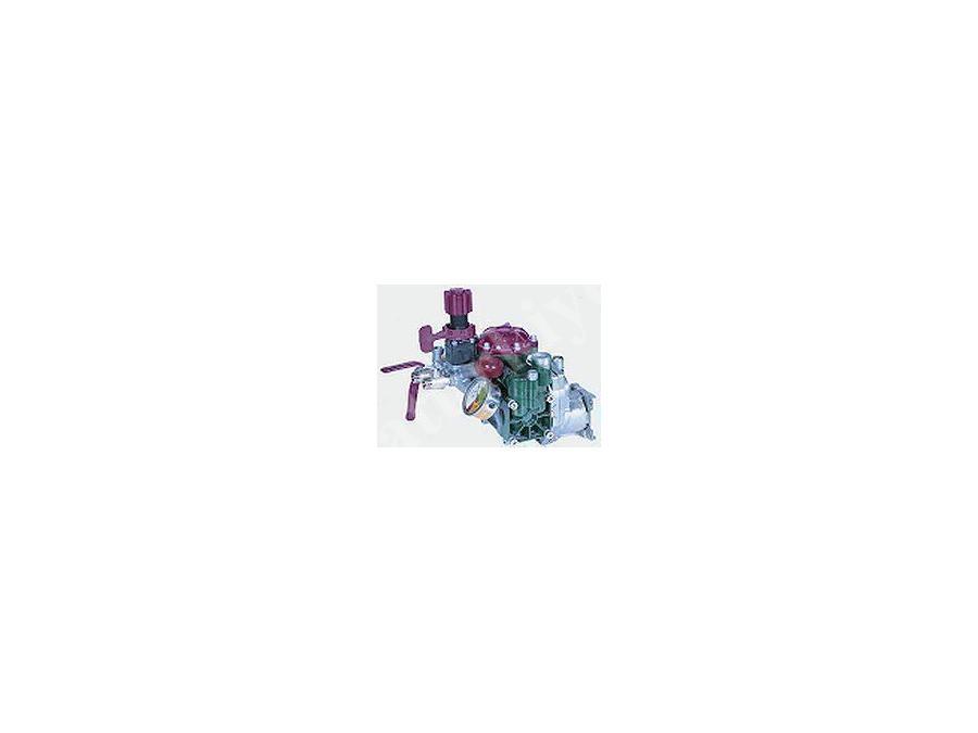 Yarı Hidrolik 2 Pistonlu Membranlı Pompa / Taral Tar 25 ( Redüktörlü)