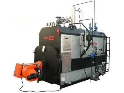 Gaz Ve Sıvı Yakıtlı Buhar Robotu - Ağır Hizmet