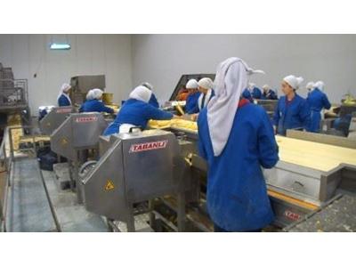 Mısır Taneleme Makinası 90-150 Koçan /Dak