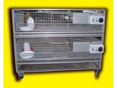 İki Katlı Civciv Ana Makinesi