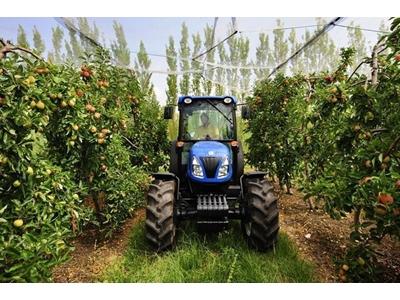 Bağ- Bahçe Traktörü / New Holland T4030v Dt 360/70r24