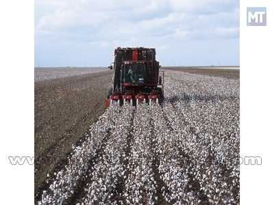 Pamuk Hasat Makinesi / Case Ih 420 Cotton Express 2