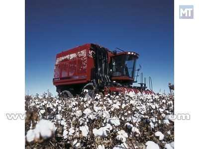 Pamuk Hasat Makinesi / Case Ih 620 Cotton Express 1