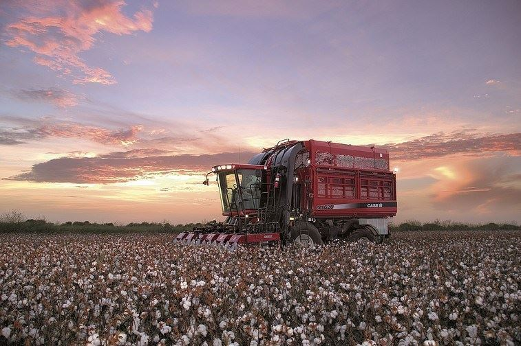 Pamuk Hasat Makinesi / Case Ih 620 Cotton Express 2