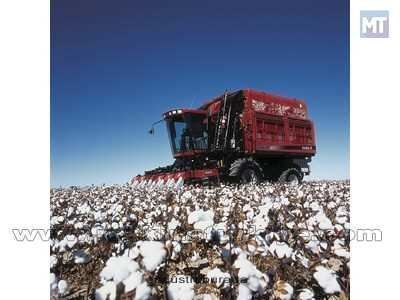 Pamuk Hasat Makinesi / Case Ih 620 Cotton Express 3