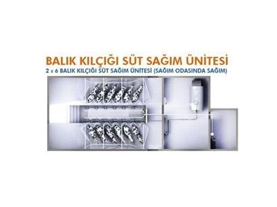 Balıkkılçığı Süt Sağım Makinası 2 x 6